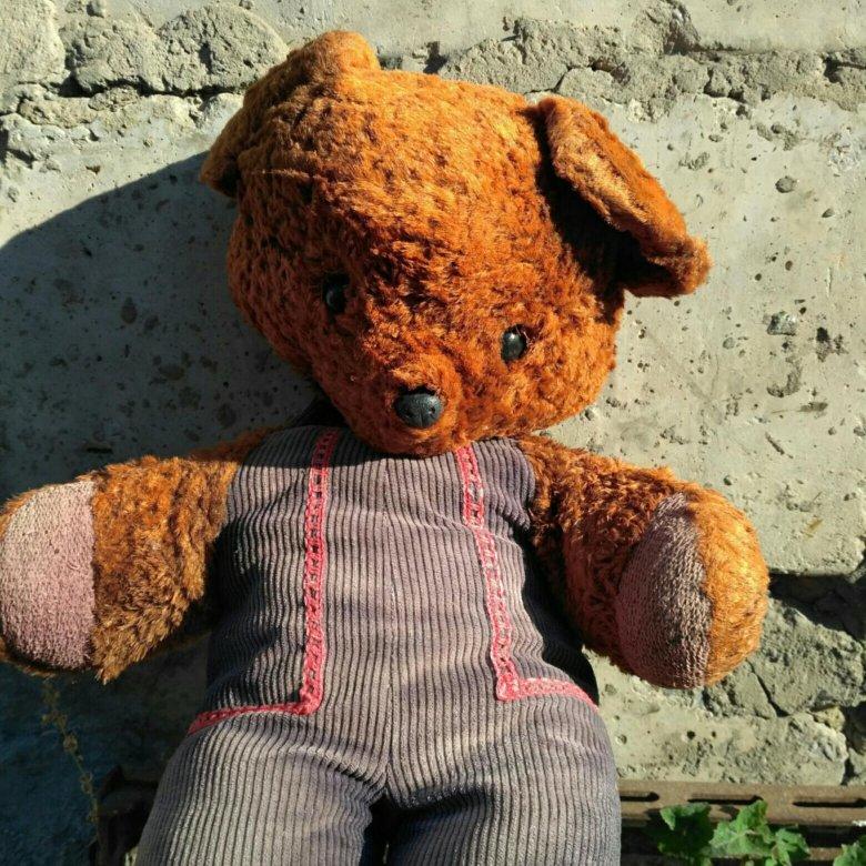 медведь ссср фото