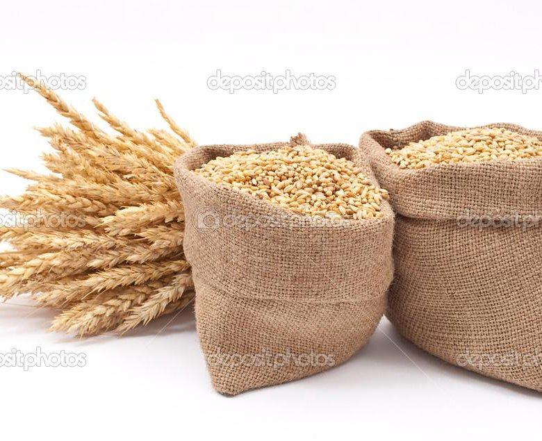 wheat sacks for sale - 800×496