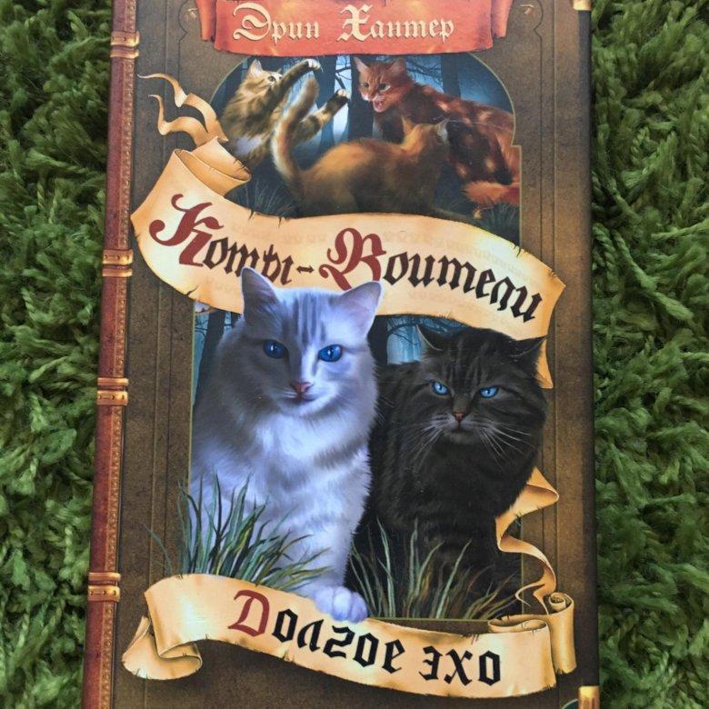 правило, картинки котов-воителей английских книг ряд товаров ашане