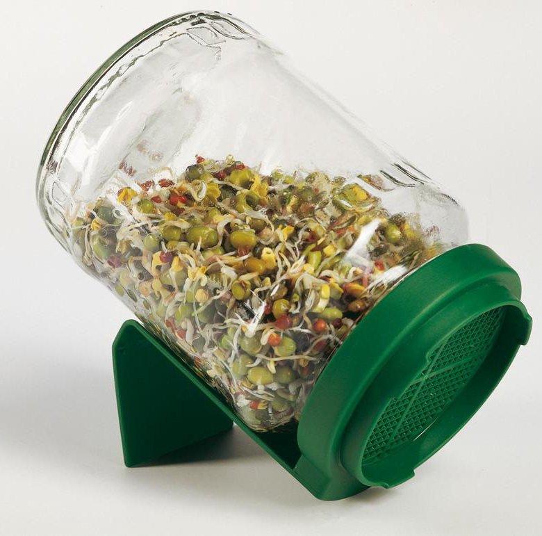Открытка с семенами для проращивания, самые