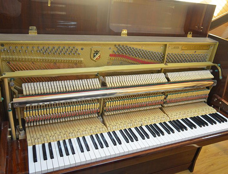 дека пианино фото грибка ногах руках