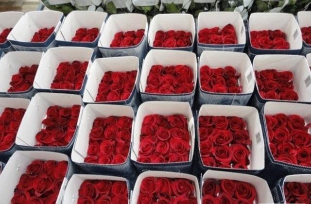 Оптовые поставщики цветов в челябинске