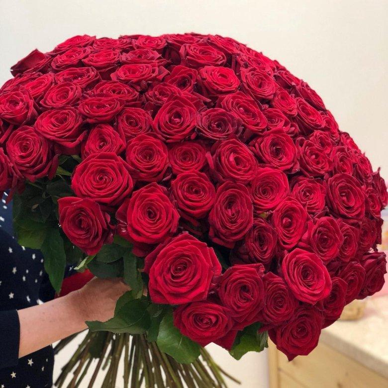 Купить дешево букет из 101 роза