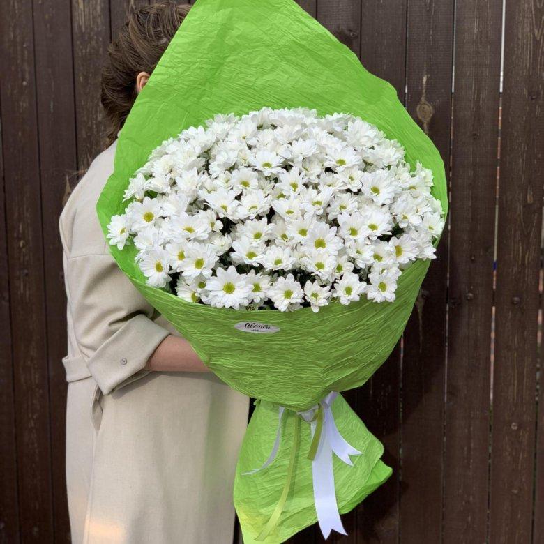 Краснодар купить цветы ромашки, цветы стерлитамаке красивые