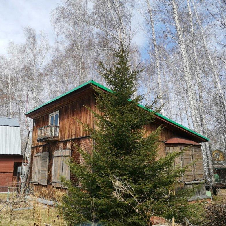 аренда дачи в новосибирске недорого с фото линия