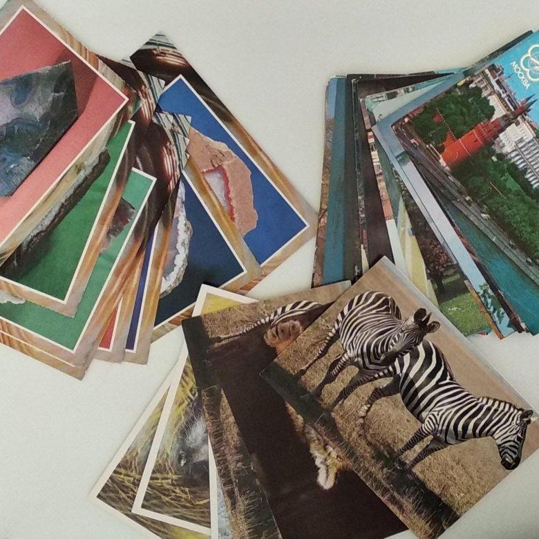 Коллекционер почтовых открыток и карточек, открытка февраля