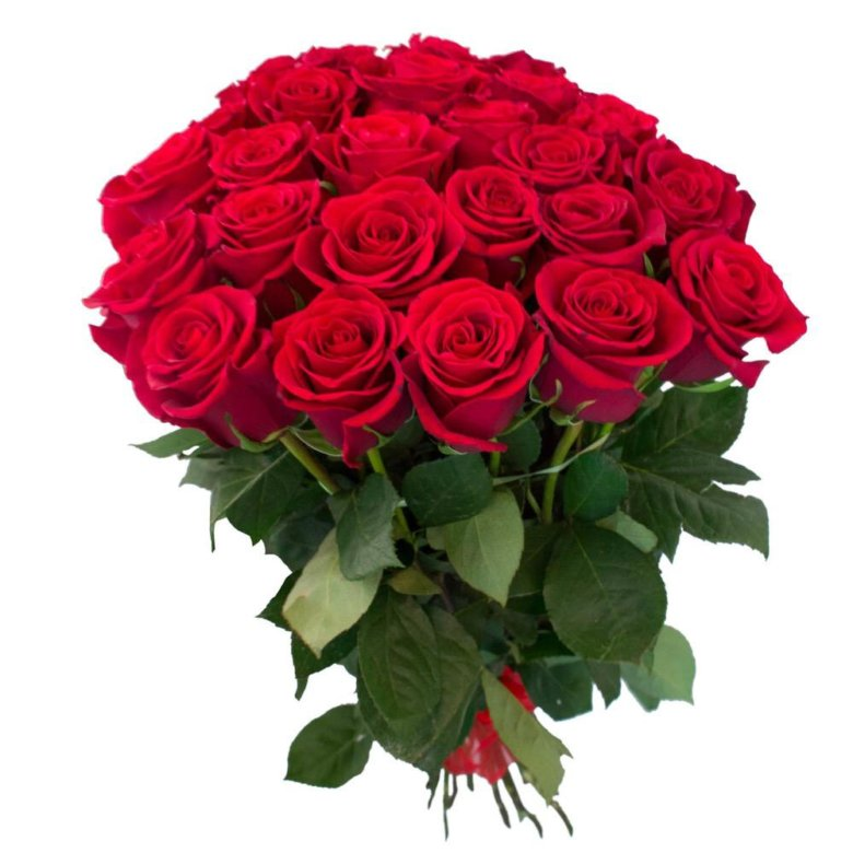 Поздравительные открытки красных роз, открытки советских