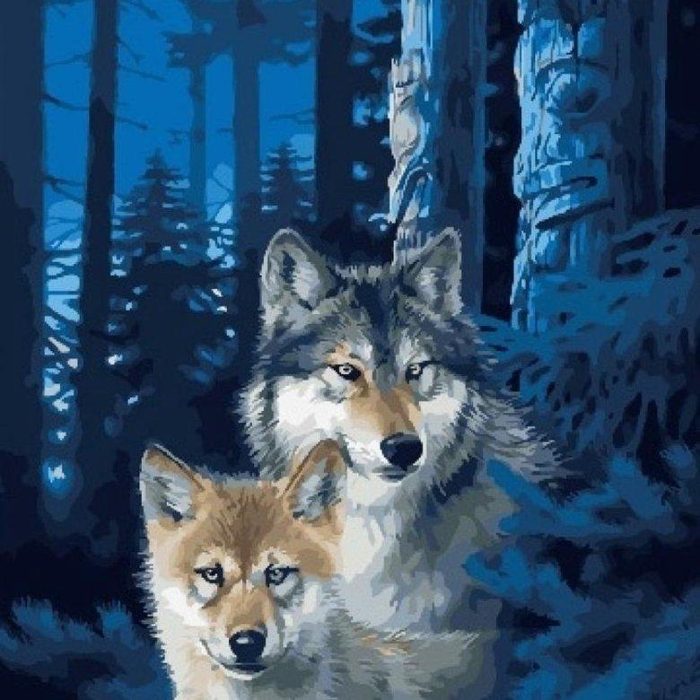 Открытки волков красивые, надписями ищу жену
