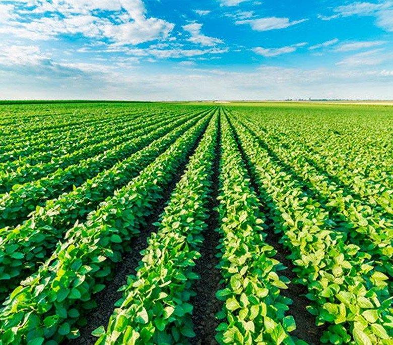 Открытка, картинки сельскохозяйственные