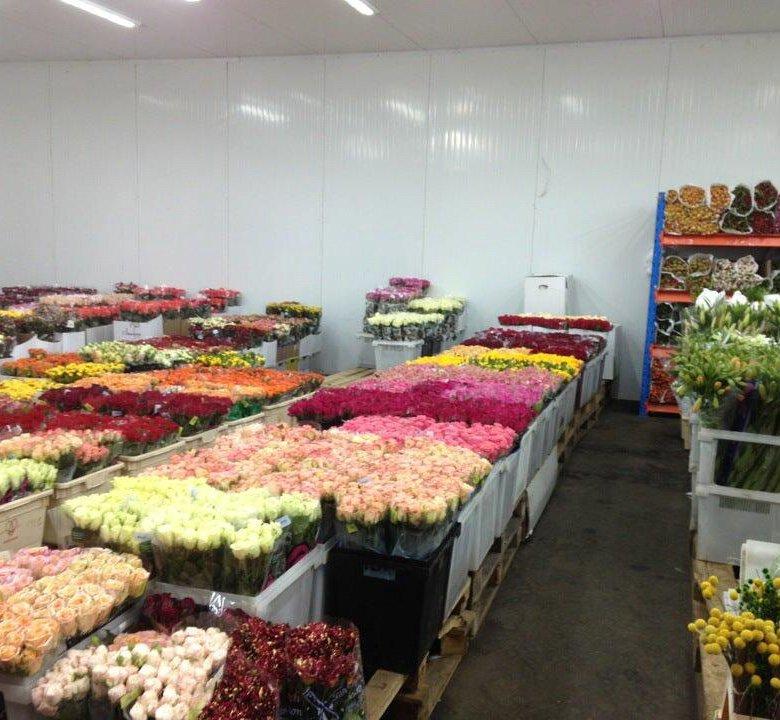 Цветы оптовая в москва база