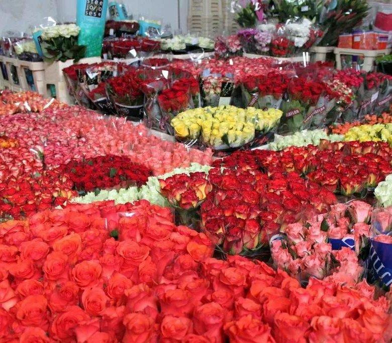 Цветы, купить розы оптом в херсоне