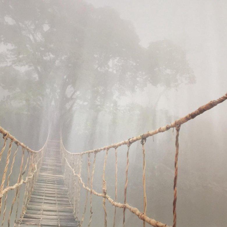 минтаем фотообои подвесной мост в тумане добирались