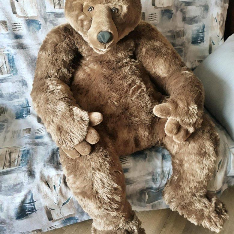 Бурый медведь фото а рабочий стол