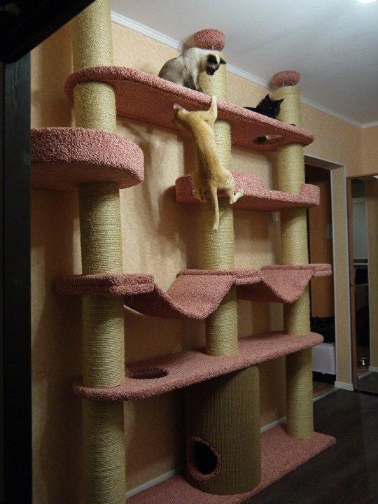 Игровой комплекс, домик Когтеточка для кошек 89043547656 купить 1