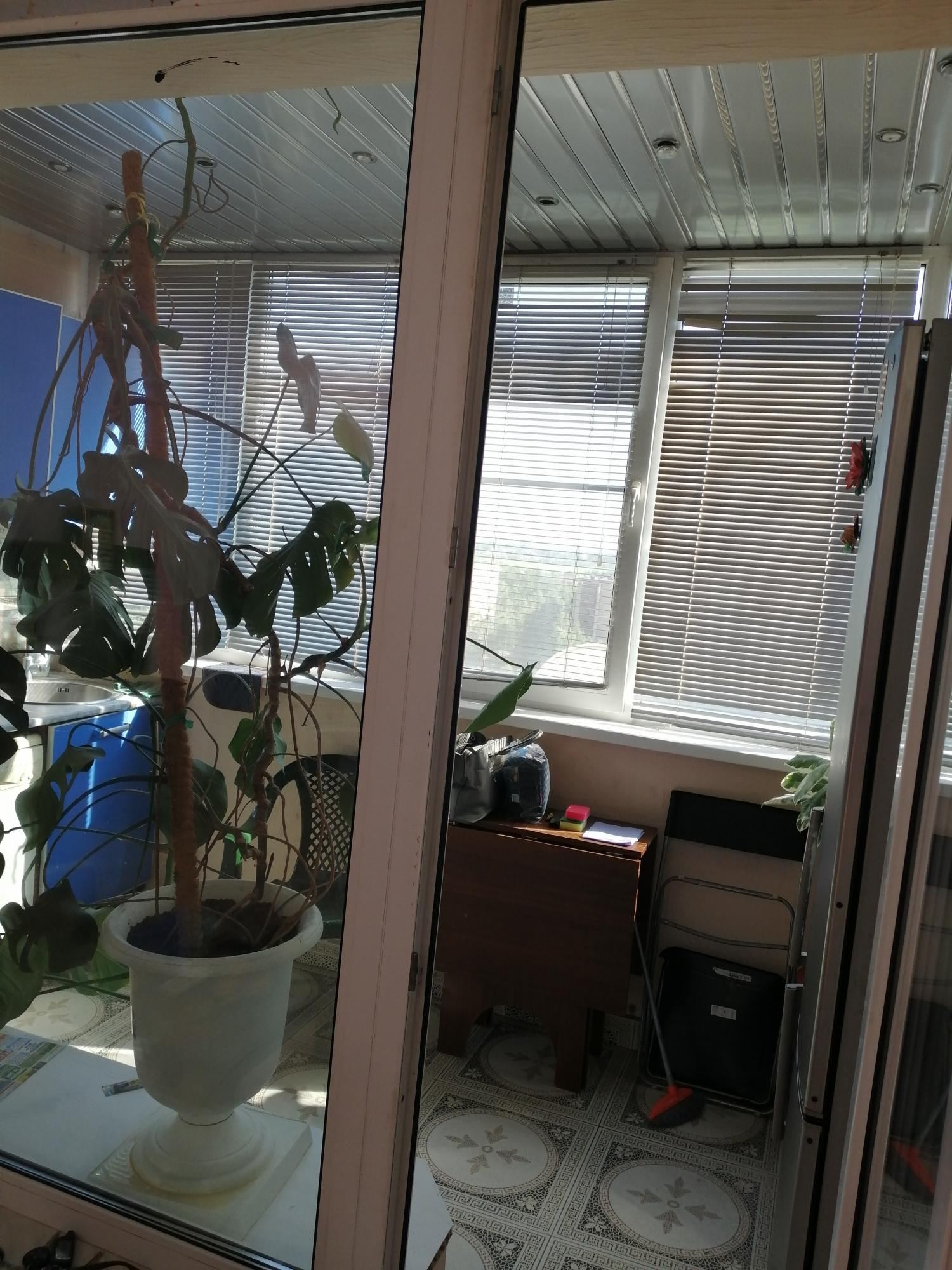 Apartment, 2 rooms, 60 m2 in Ivanteevka 89037472021 buy 5