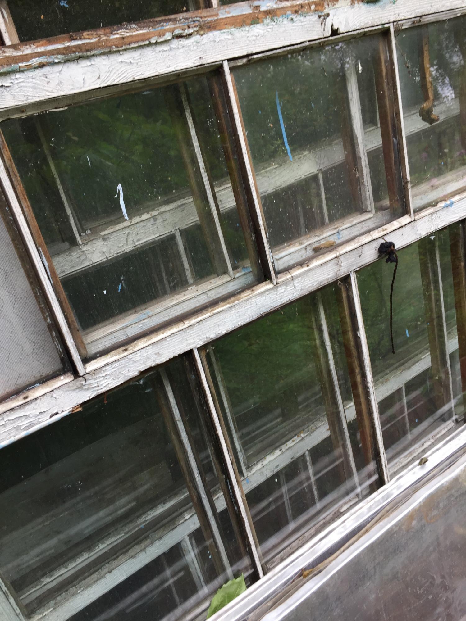 Рамы со стеклом бесплатно в Москве 89162350325 купить 2