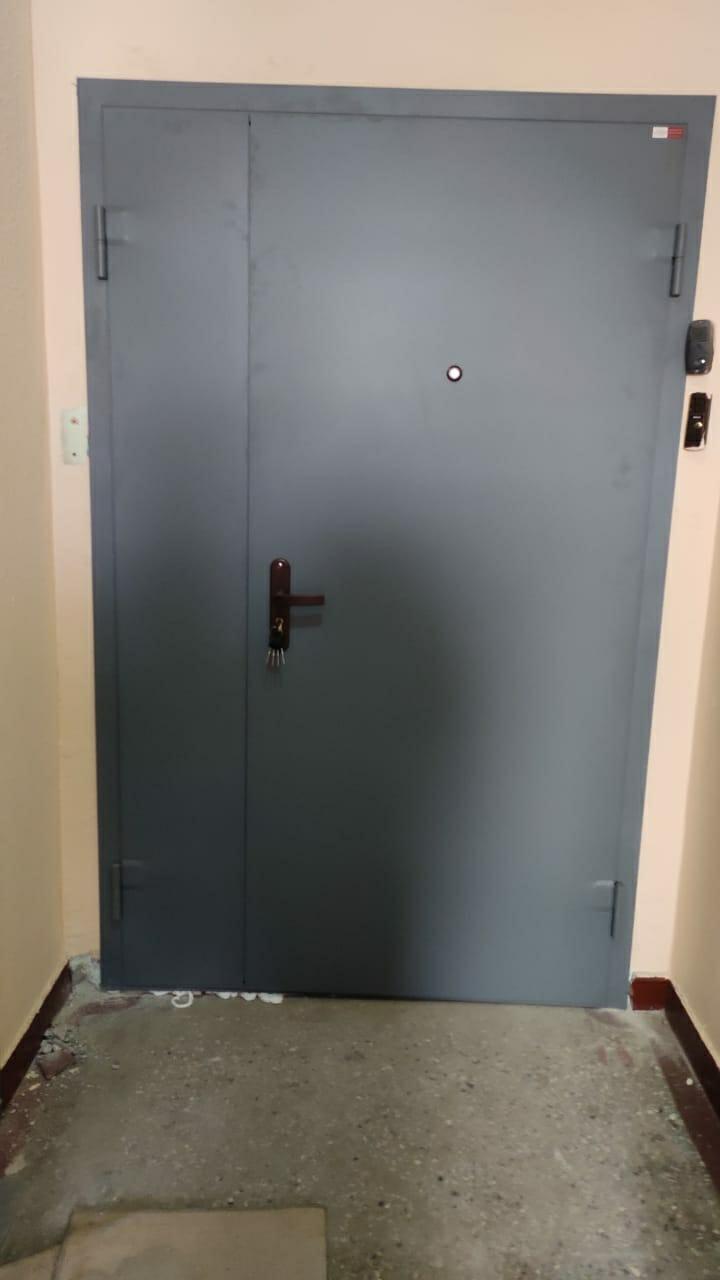 Дверь тамбурная в Видном 89647833371 купить 1