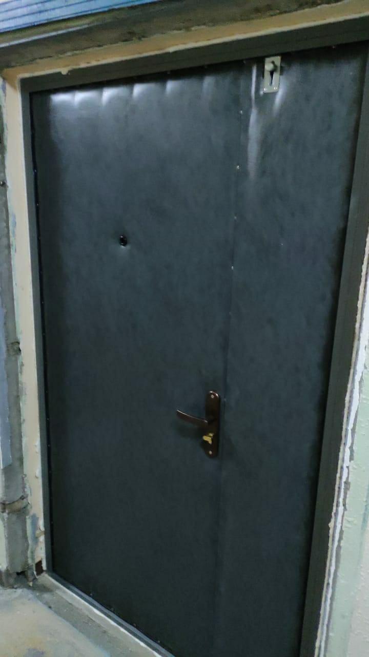Дверь тамбурная в Видном 89647833371 купить 3